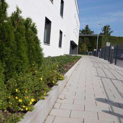 Pflege der Grünanlagen