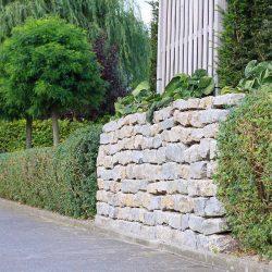 Kombination aus Hecke und Steinmauer