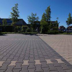 Pflege von Grünanlagen und Parkplätzen