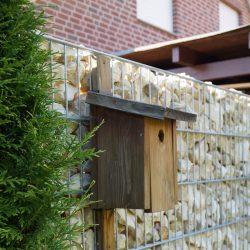 Steinmauer mit Vogelhaus