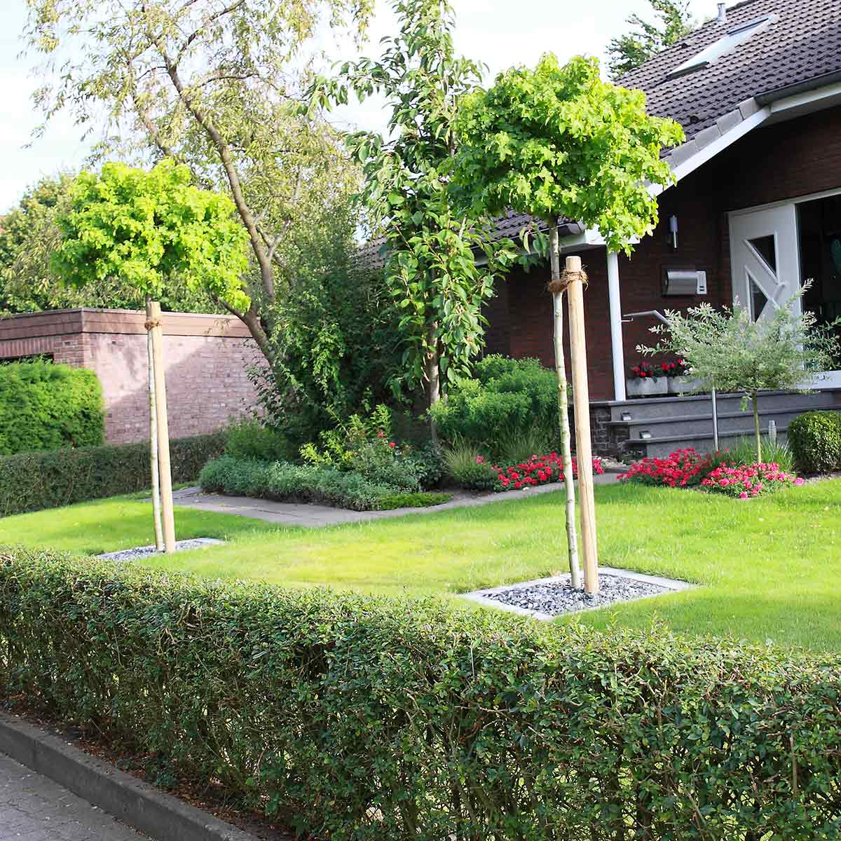 Vorgartengestaltung im raum m nster hamm tripp galabau for Vorgartengestaltung bilder