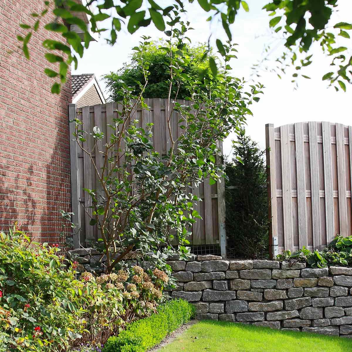Vorgartengestaltung im raum m nster hamm tripp galabau - Vorgarten hochbeet ...