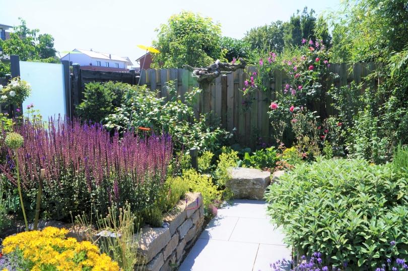 Insektenfreundlicher Garten mit Blumen